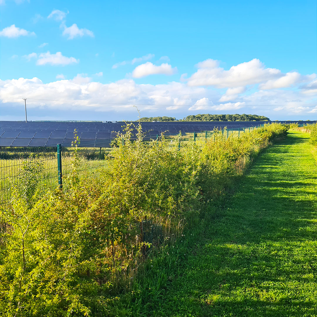 Local Footpath - with solar panels visible